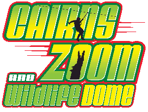 Zoom Dome for web